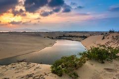 En oas med en liten sjö på den färgrika solnedgången i Quy Nhon, Vietnam royaltyfri fotografi