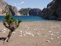 En ofördärvad strandsand, hav och tystnad Royaltyfri Fotografi