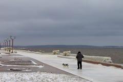En oidentifierad man och hans hund som går till och med den iskalla öde invallningen Fotografering för Bildbyråer