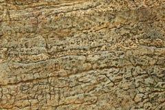 En olik naturlig designram av sprucket vaggar naturlig bakgrund för textur arkivbilder
