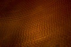 En orange bakgrund Royaltyfria Bilder