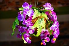 en orkidébukett royaltyfri bild