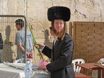 En ortodox jude i Shtreimel på den västra väggen, den att jämra sig väggen eller Kotel, Jerusalem, Israel Royaltyfri Fotografi