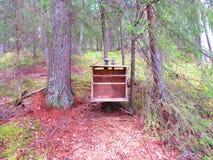 En oud boekenrek dat ik in het bos heb gevonden stock fotografie