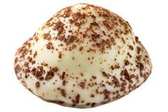 En pärlemorfärg godis för vanilj som isoleras på vit Royaltyfri Fotografi