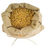 En påse av korn arkivfoto