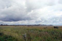 En panorama av de sydliga ukrainska stäpparna nära det Azov havet nära staden av den Berdyansk Zaporozhye regionen royaltyfri foto