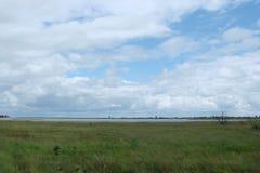 En panorama av de sydliga ukrainska stäpparna nära det Azov havet nära staden av den Berdyansk Zaporozhye regionen royaltyfri fotografi