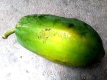 en papaya Royaltyfria Bilder