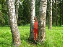 En parc de Pavlovsk photos stock
