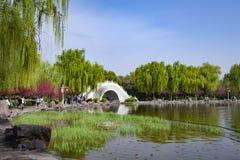 En parc, pont blanc de vo?te, saules verts tendres et fleurs rouges de jaspe images libres de droits