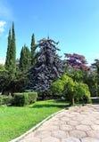 En parc subtropical Photo stock