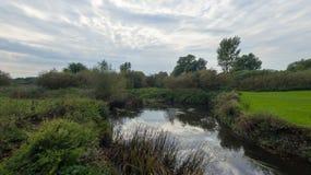 En parkera på sena September, sikt av en flod Royaltyfria Foton