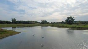 En parkera på sena September, sikt av en sjö på den sena eftermiddagen Royaltyfri Bild