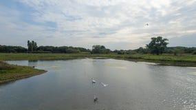 En parkera på sena September, sikt av en sjö på den sena eftermiddagen Royaltyfria Foton