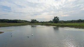 En parkera på sena September, sikt av en sjö på den sena eftermiddagen Royaltyfri Foto