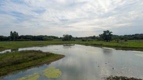 En parkera på sena September, sikt av en sjö på den sena eftermiddagen Royaltyfri Fotografi