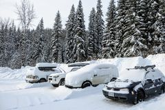 En parkeringsplats i skogarna av Fernie, British Columbia, Kanada Bilarna, parkeringsplatsen och de omgeende träden täckas i snö arkivfoto