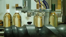 En passant le convoyeur soyez des bouteilles de vin Production de vin à l'établissement vinicole banque de vidéos