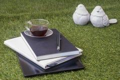 En penna, en anteckningsbok, en minnestavla och ett exponeringsglas av te på gräsmattan royaltyfri fotografi