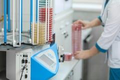 En petri maträtt i händerna av en laborant, ett medicinskt laboratorium Royaltyfri Fotografi