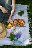 En picknick med frukter och giffel Arkivbilder