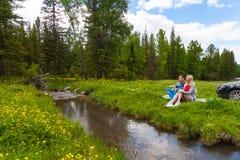 En picknick på banken av en bergflod med grönt gräs och gula blommor mot bakgrunden av barrträd och en blått royaltyfri foto
