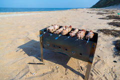 En picknick på kusterna av Blacket Sea Arkivfoton