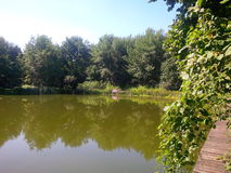 En picknick vid dammet Arkivbilder