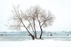 En pil nästan den Dnieper floden i Kiev, Ukraina, under vinter royaltyfria foton