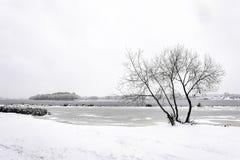 En pil nästan den Dnieper floden i Kiev, Ukraina, under vinter royaltyfri foto