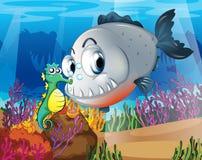 En piranha och en seahorse under havet Arkivbilder