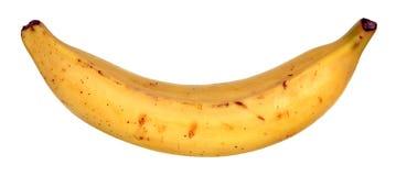 En pisangbanan royaltyfri bild