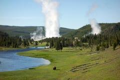En pittoresk sikt av Yellowstone parkerar i sommartiden royaltyfri bild