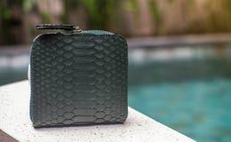 En plånbok för gröna pengar, elegant liten gräsplanläderpåse nära pöl av en fashionista Liten märkt plånbokpåse isolerade vita kv royaltyfria foton
