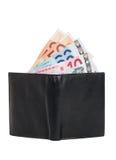 En plånbok med sedlar arkivbild