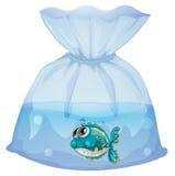 En plast- påse med en fisk Arkivbild