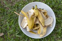 En platta av bananen skalar arkivfoton
