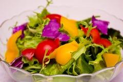 en platta av den kalla maträtten Arkivfoto