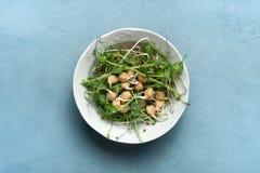 En platta av mikro-gräsplan sallad vegetarianism banta sunt arkivfoto