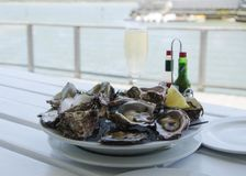 En platta av nya öppna ostron och ett exponeringsglas av champagne på en vit tabell med en sikt av havet, selektiv fokus Royaltyfri Bild