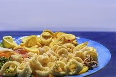 En platta av stekte calamaritioarmade bläckfiskar med stekt potatisar och vegetab Arkivfoton