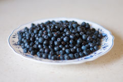 En platta med blåbär Royaltyfri Fotografi
