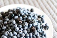 En platta som fylls med blåbäret och Blackberry Arkivfoton