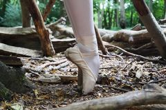 En pointe Stock Photography