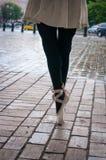 En Pointe della ballerina Fotografia Stock Libera da Diritti