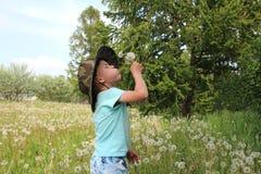 En pojke i en hatt bland gräset som blåser på maskrosor arkivbild