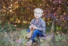 En pojke i träna med en favorit- nallebjörn royaltyfri foto