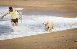 En pojke med en hund på stranden Arkivfoto