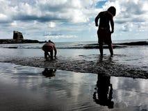 En pojke och en flicka som söker efter skal Fotografering för Bildbyråer